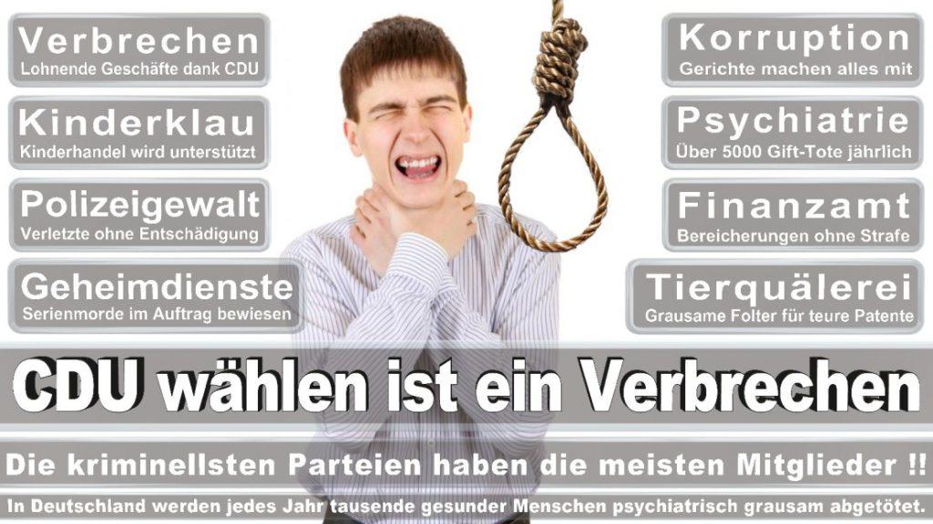Wahlplakate-2017-CDU (356)