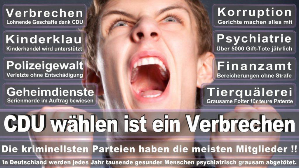 Wahlplakate-2017-CDU (358)