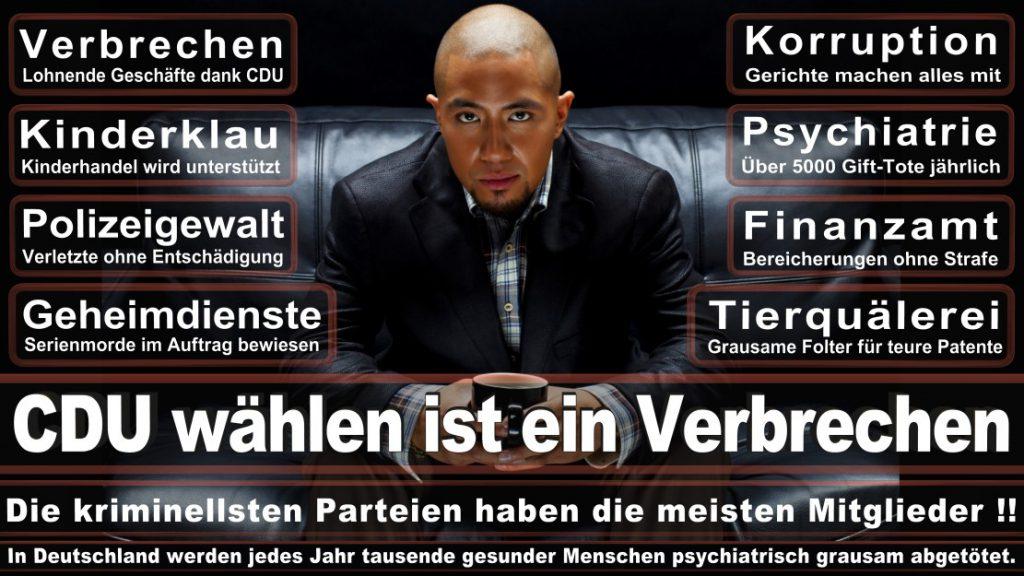 Wahlplakate-2017-CDU (359)