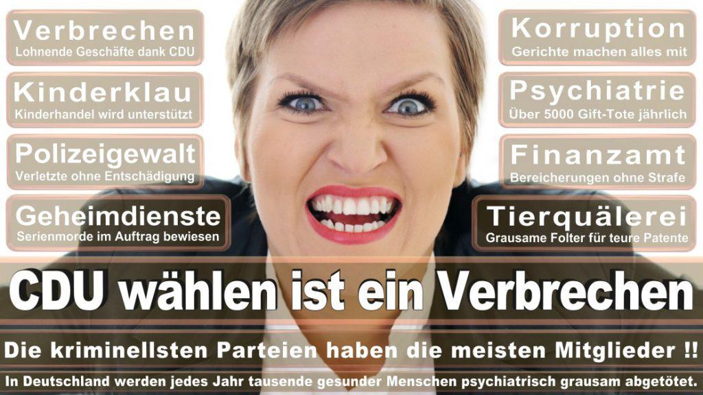 Wahlplakate-2017-CDU (36)