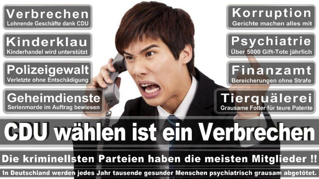 Wahlplakate-2017-CDU (360)