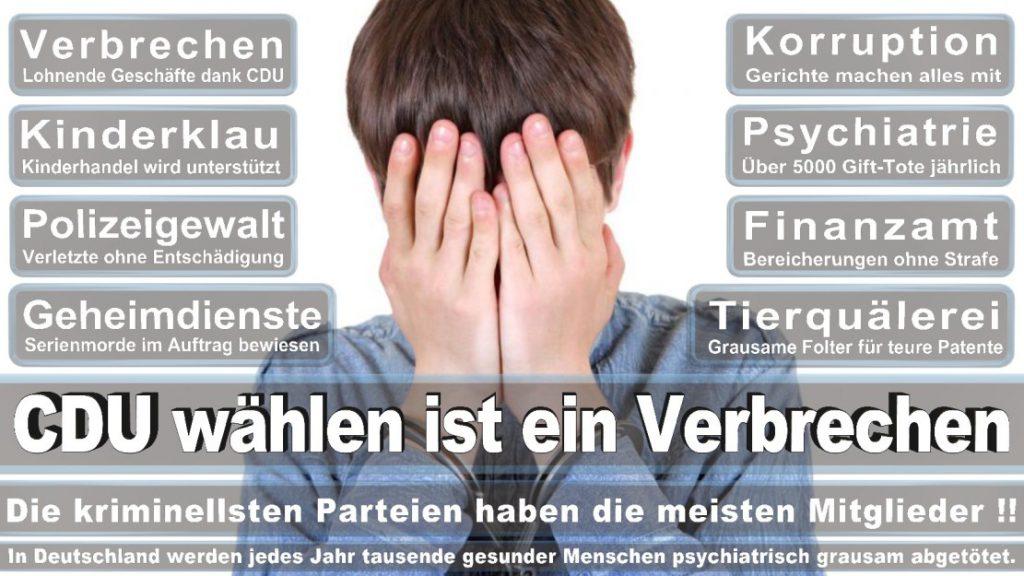 Wahlplakate-2017-CDU (361)