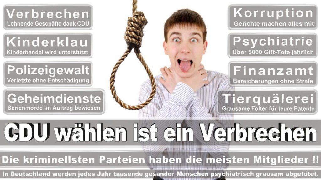 Wahlplakate-2017-CDU (362)