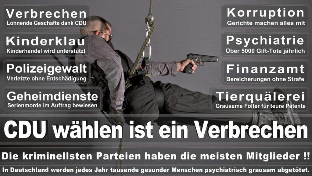 Wahlplakate-2017-CDU (364)