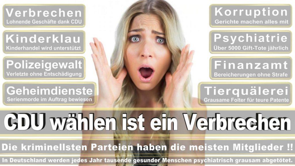 Wahlplakate-2017-CDU (365)
