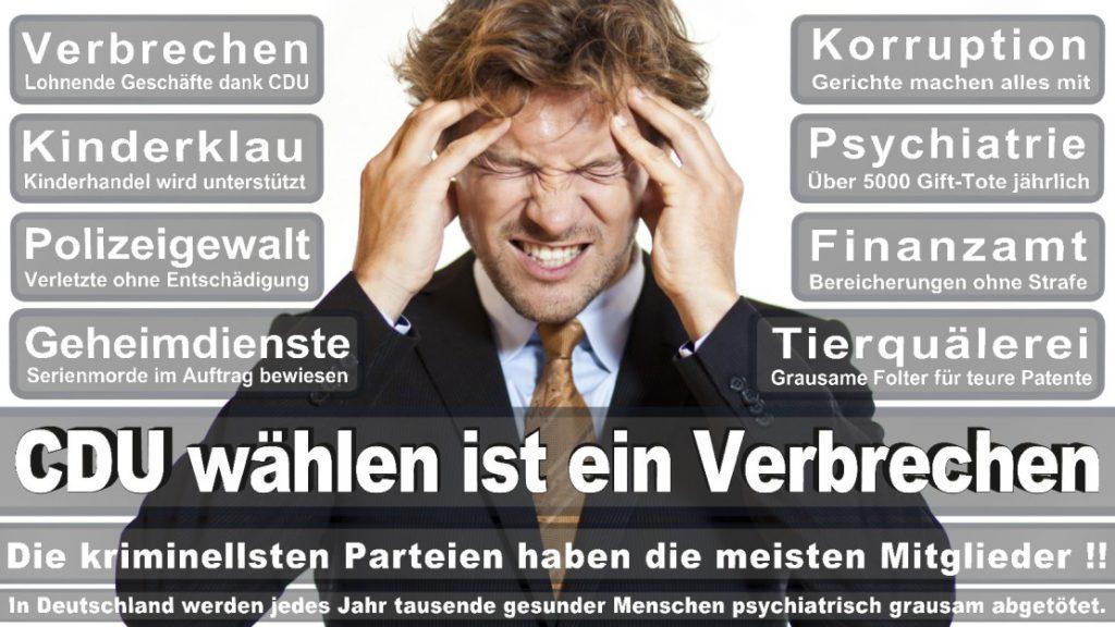 Wahlplakate-2017-CDU (366)