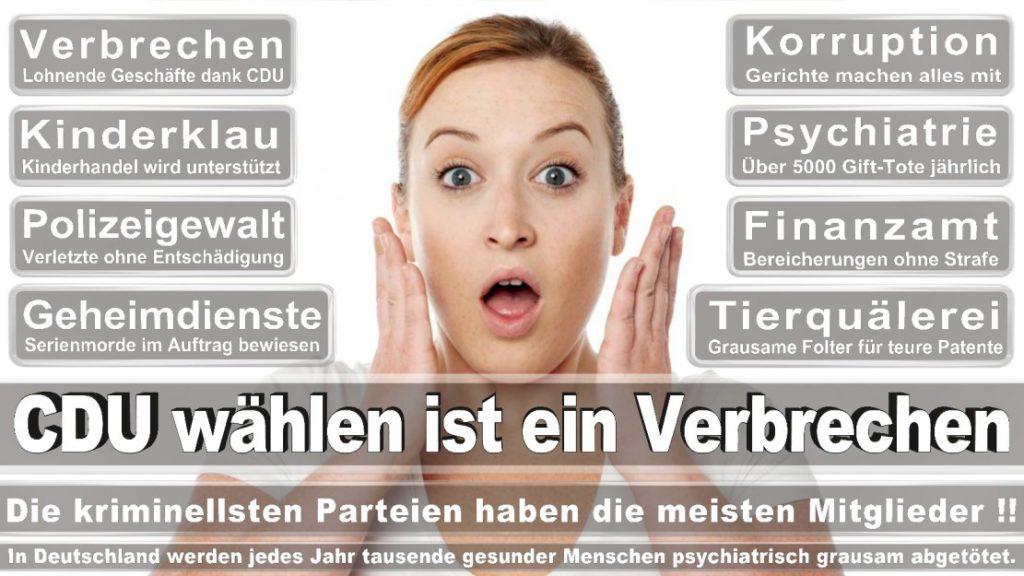 Wahlplakate-2017-CDU (367)