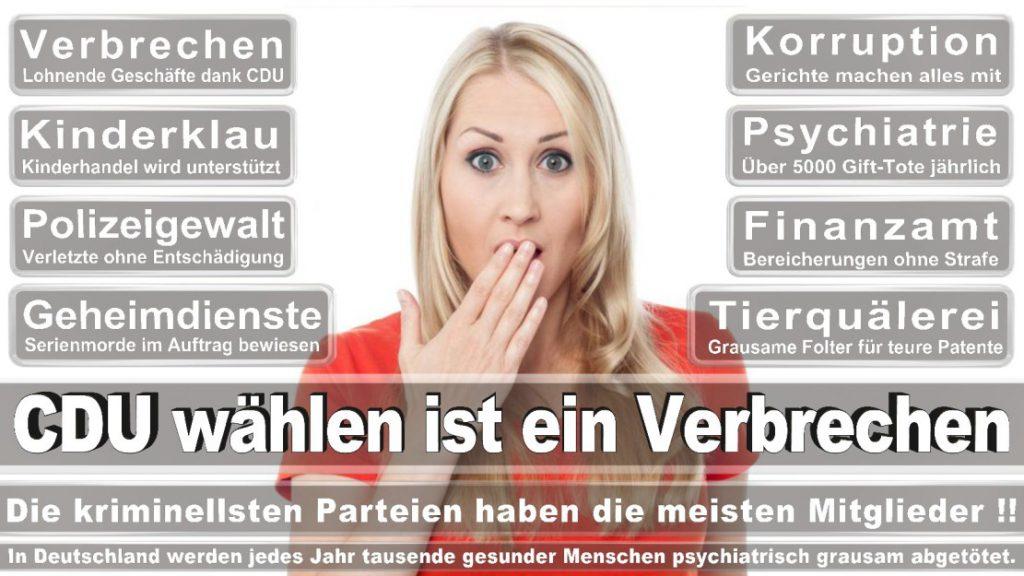 Wahlplakate-2017-CDU (368)