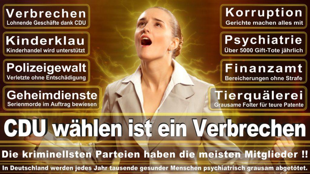 Wahlplakate-2017-CDU (369)