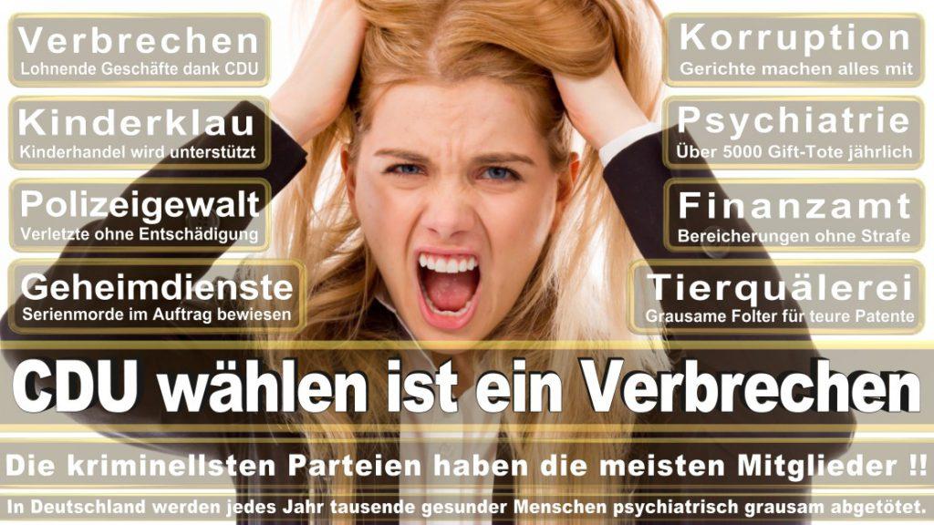 Wahlplakate-2017-CDU (37)