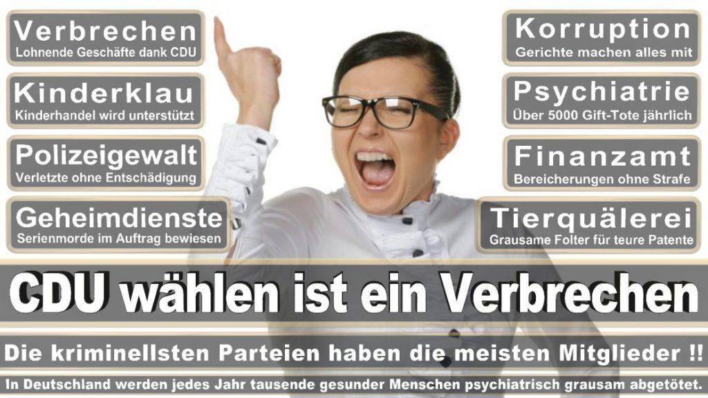 Wahlplakate-2017-CDU (370)
