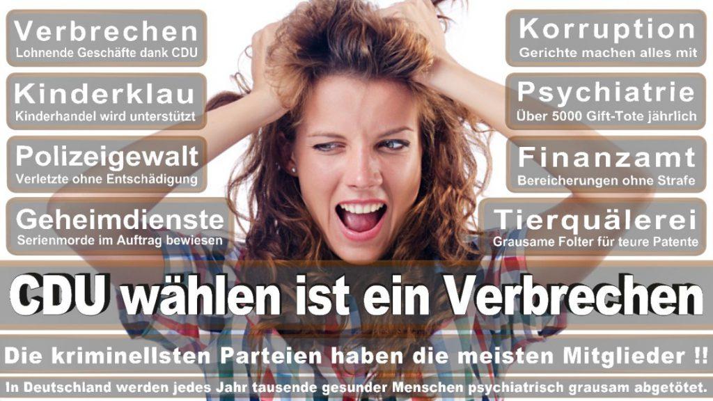 Wahlplakate-2017-CDU (371)