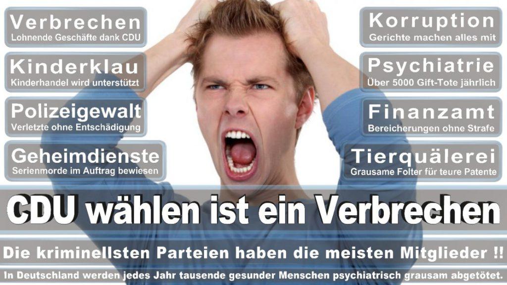Wahlplakate-2017-CDU (372)