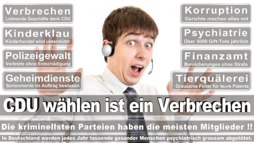 Wahlplakate-2017-CDU (373)