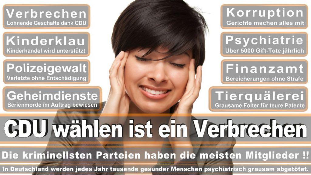 Wahlplakate-2017-CDU (374)