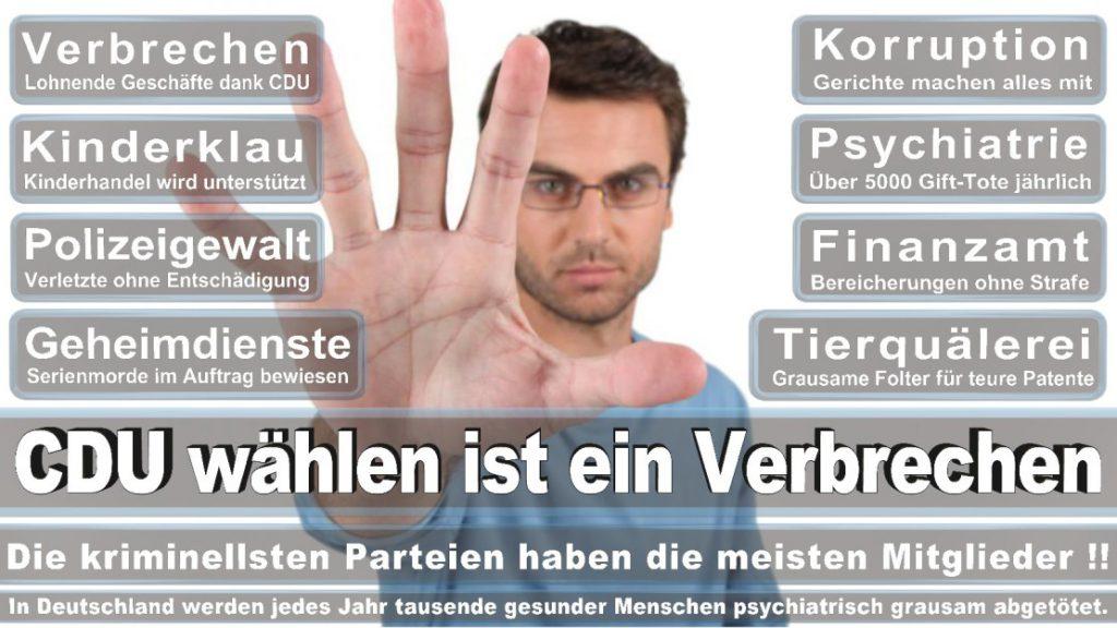 Wahlplakate-2017-CDU (375)