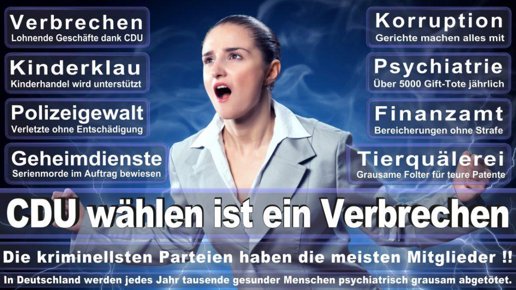 Wahlplakate-2017-CDU (376)