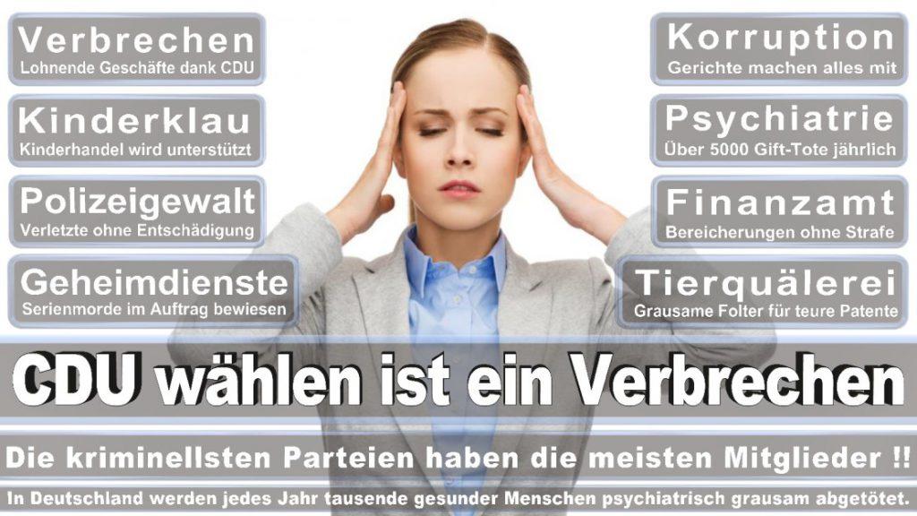 Wahlplakate-2017-CDU (377)