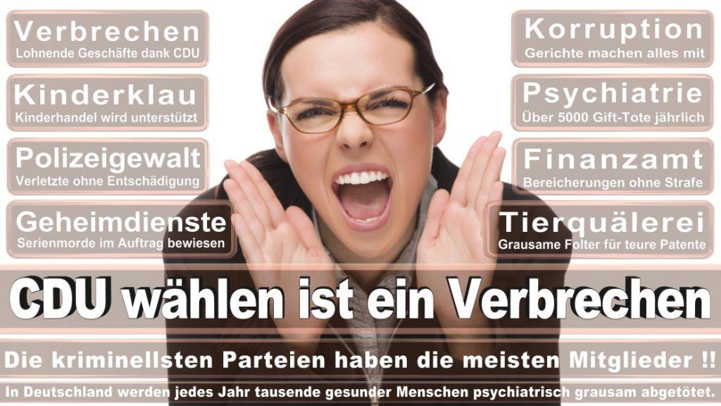 Wahlplakate-2017-CDU (378)