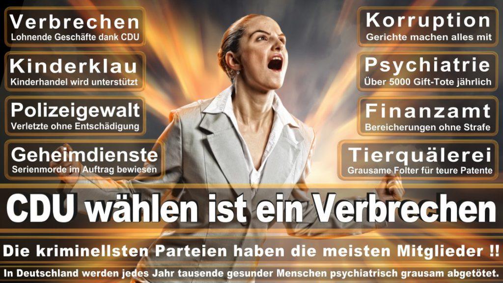 Wahlplakate-2017-CDU (379)