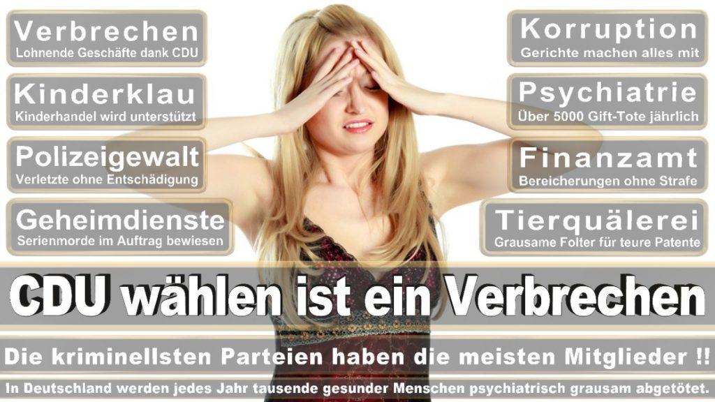 Wahlplakate-2017-CDU (38)