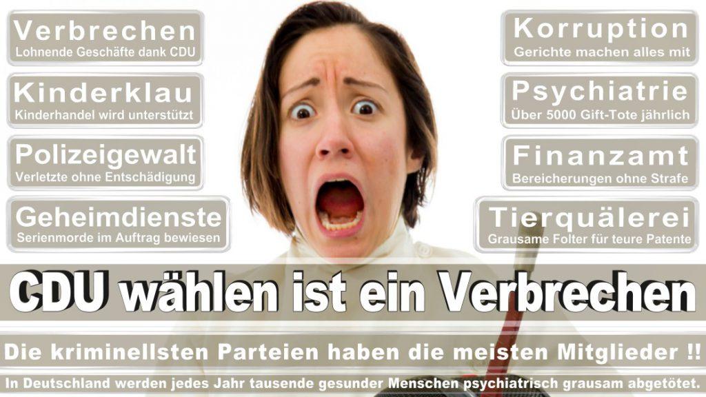 Wahlplakate-2017-CDU (381)