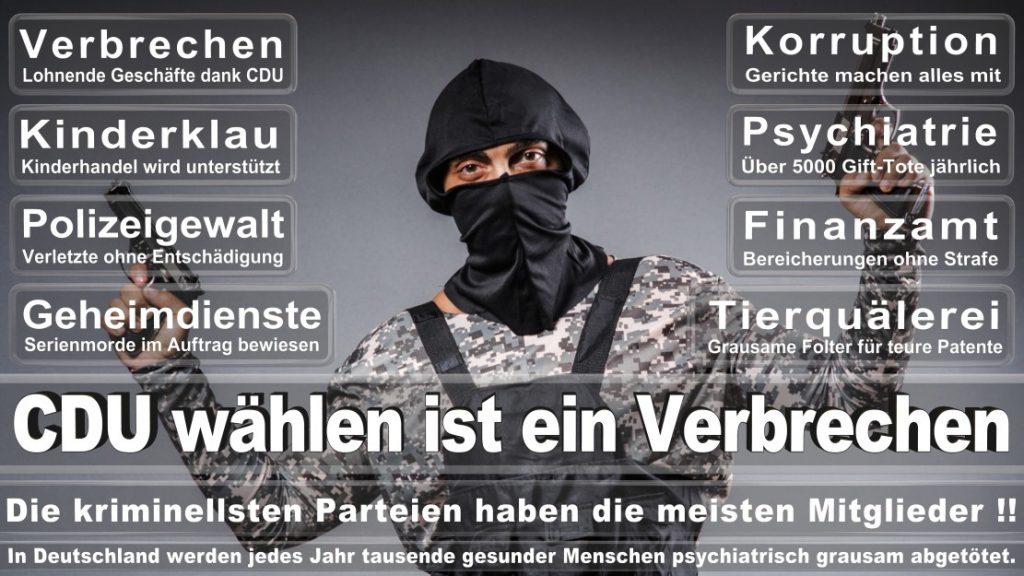Wahlplakate-2017-CDU (382)