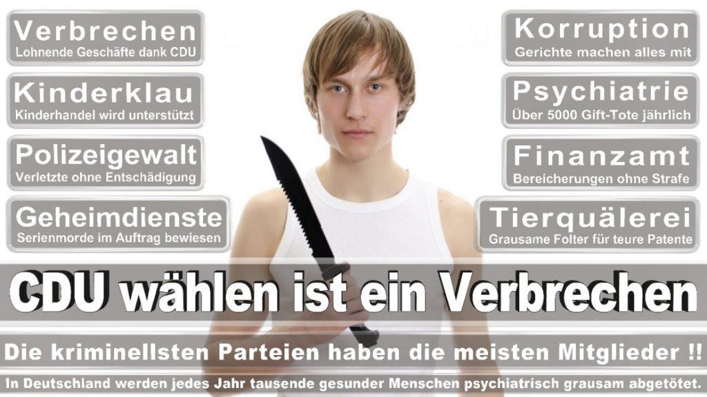 Wahlplakate-2017-CDU (383)