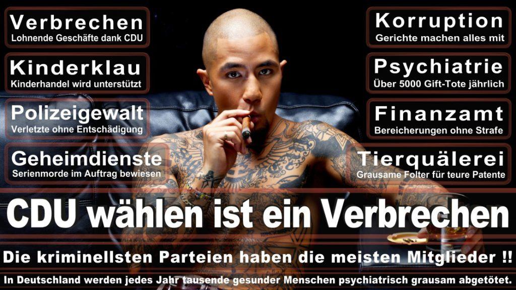 Wahlplakate-2017-CDU (384)