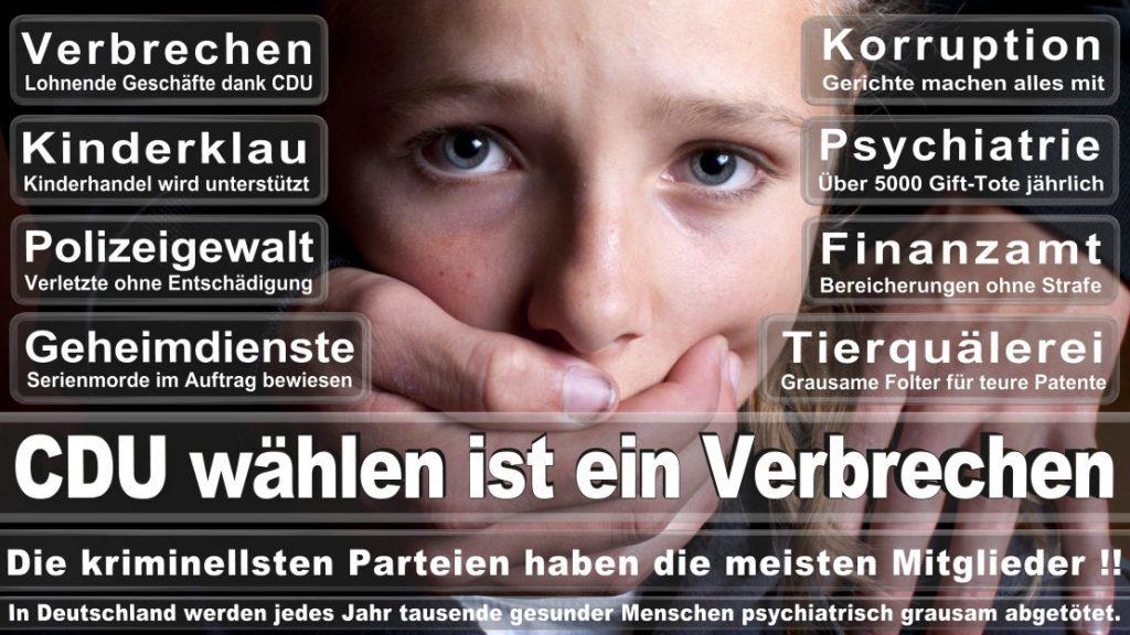 Wahlplakate-2017-CDU (385)
