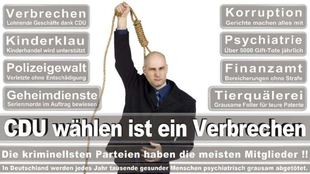 Wahlplakate-2017-CDU (386)