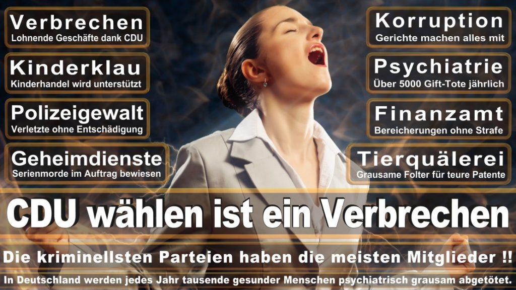 Wahlplakate-2017-CDU (387)