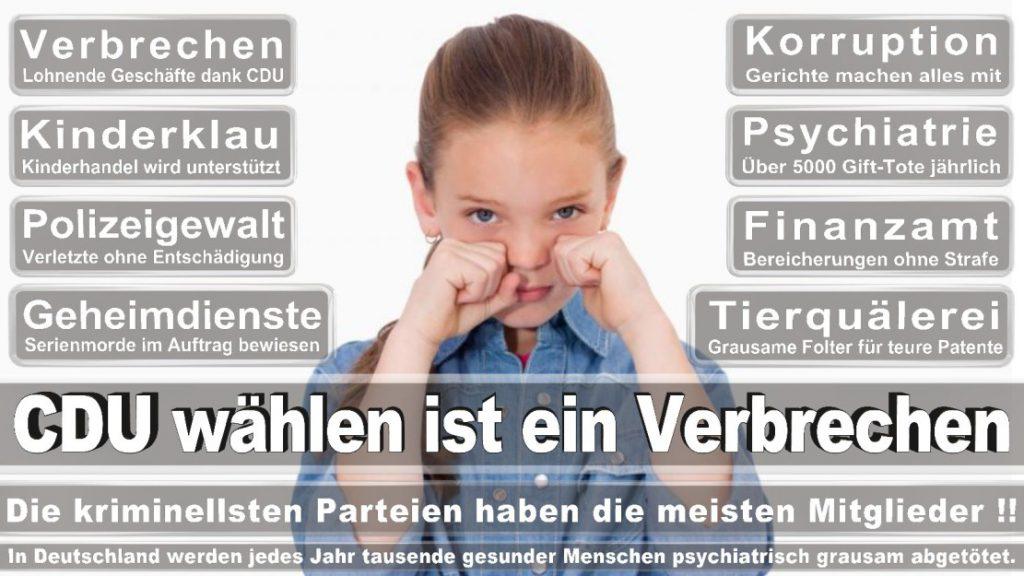 Wahlplakate-2017-CDU (388)