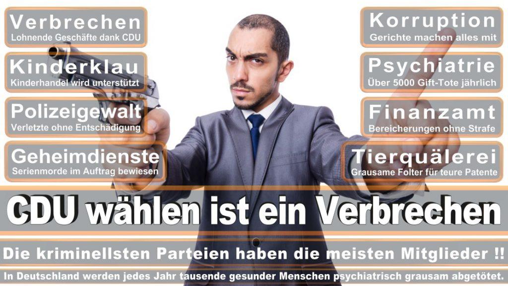 Wahlplakate-2017-CDU (39)