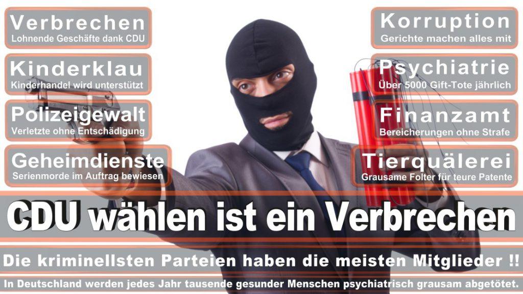 Wahlplakate-2017-CDU (390)