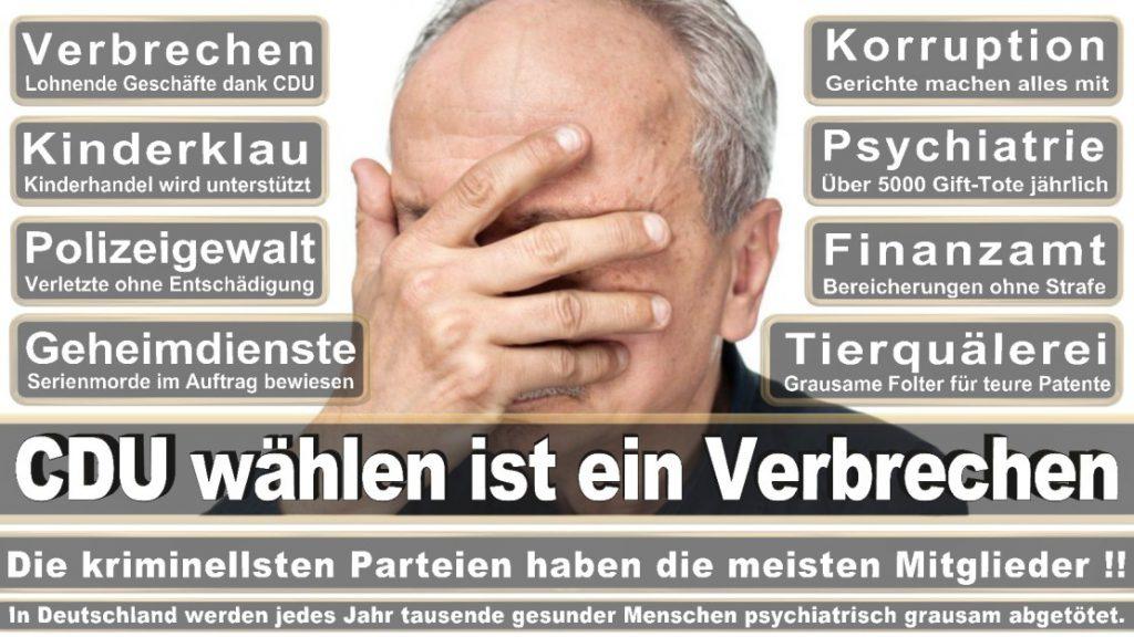 Wahlplakate-2017-CDU (391)