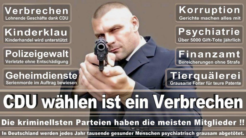 Wahlplakate-2017-CDU (392)