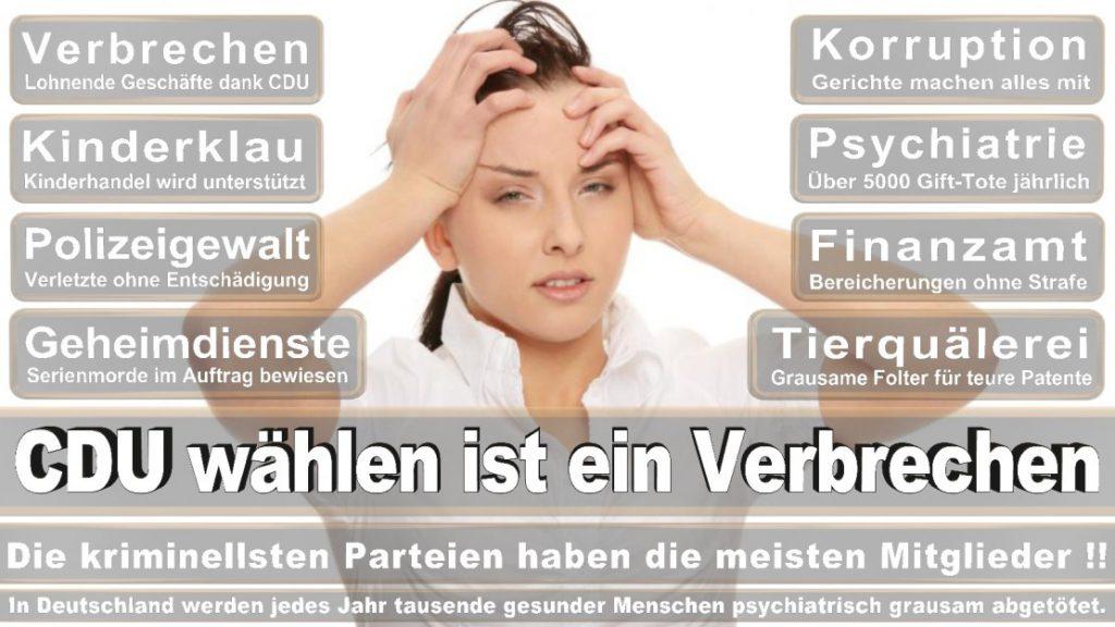 Wahlplakate-2017-CDU (393)