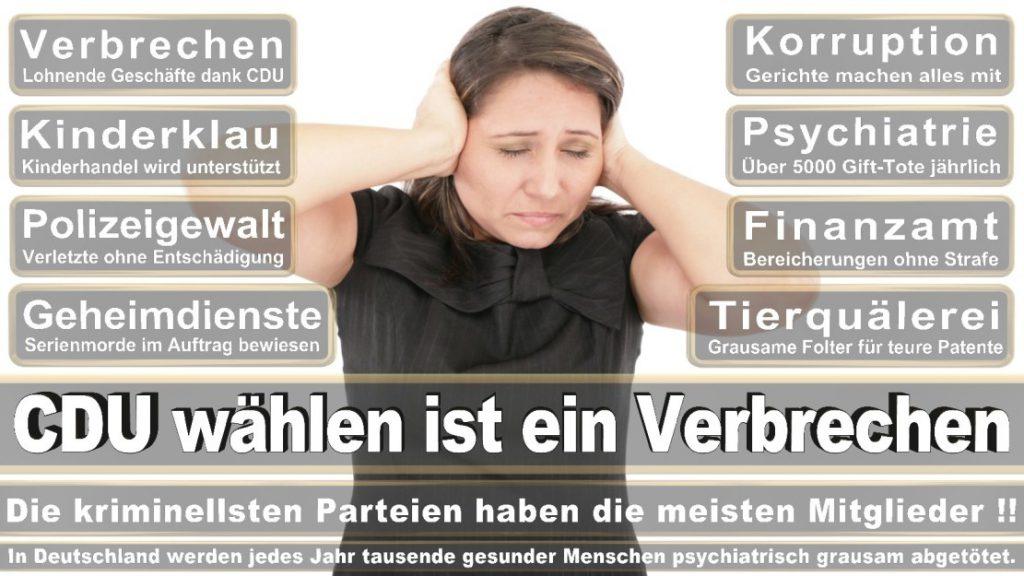 Wahlplakate-2017-CDU (394)