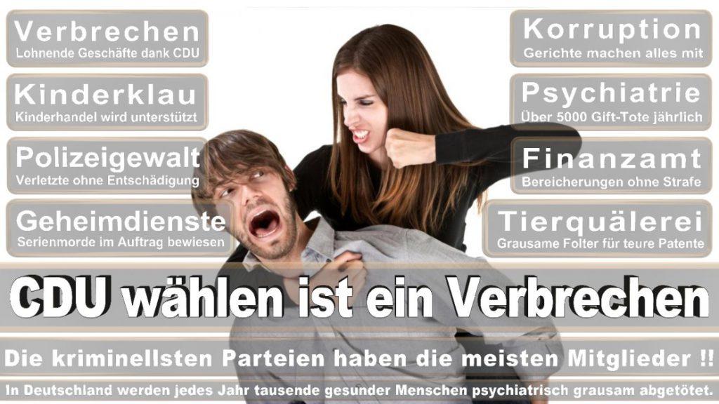 Wahlplakate-2017-CDU (4)