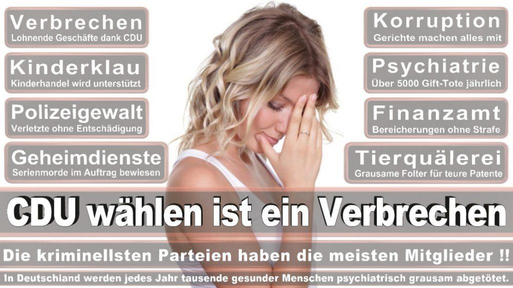Wahlplakate-2017-CDU (40)
