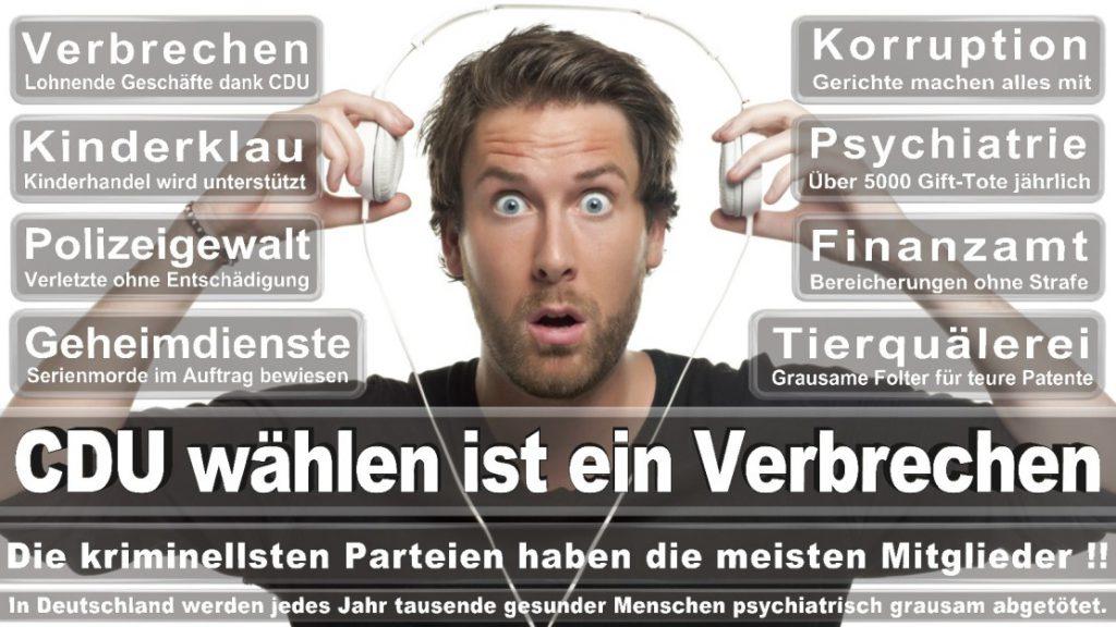 Wahlplakate-2017-CDU (41)