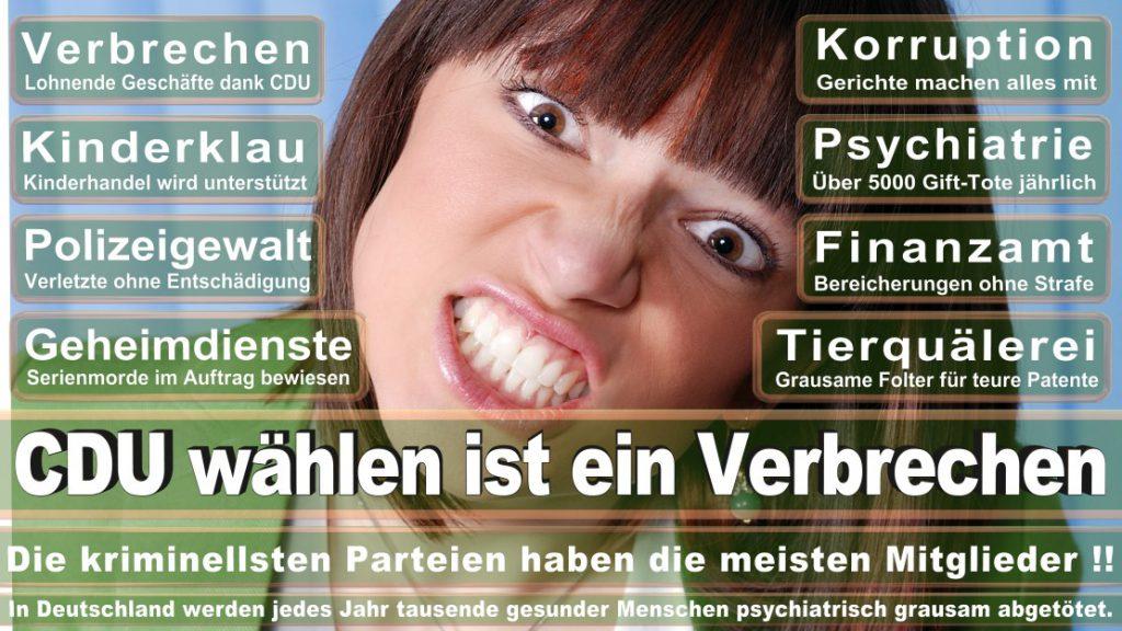 Wahlplakate-2017-CDU (42)