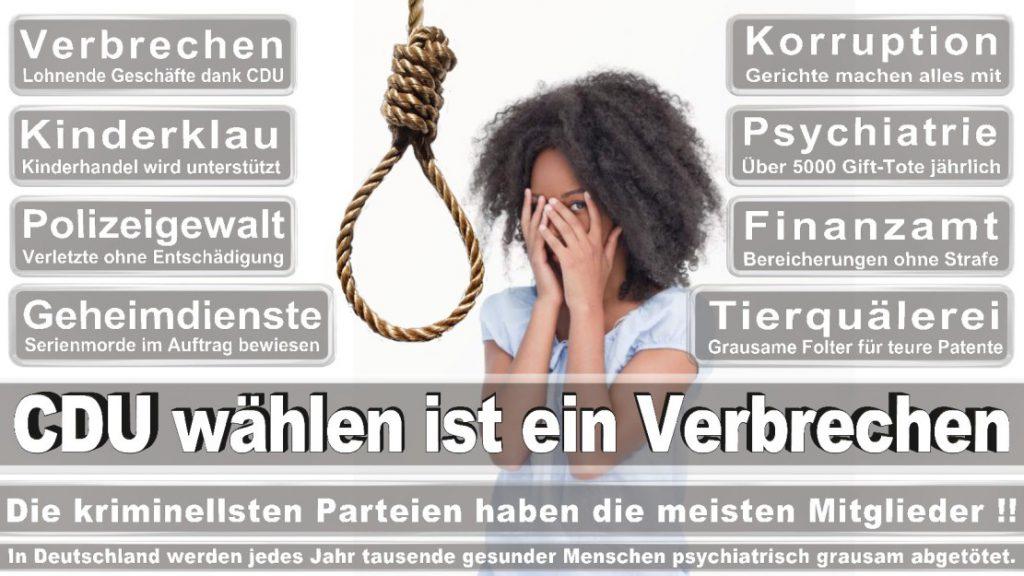 Wahlplakate-2017-CDU (43)