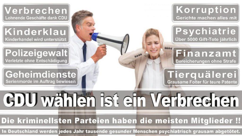 Wahlplakate-2017-CDU (45)