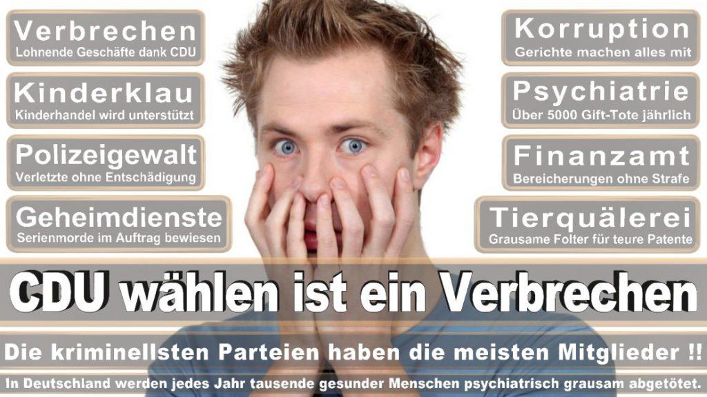 Wahlplakate-2017-CDU (46)