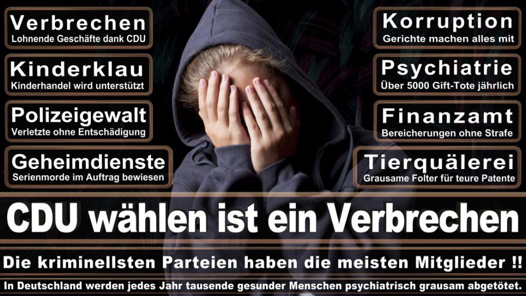 Wahlplakate-2017-CDU (47)