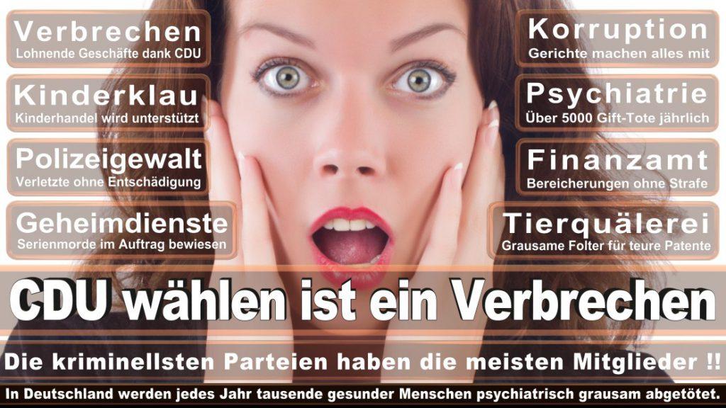 Wahlplakate-2017-CDU (48)