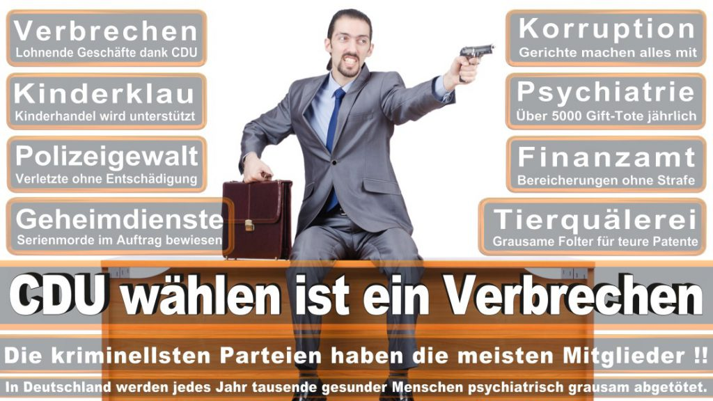 Wahlplakate-2017-CDU (49)