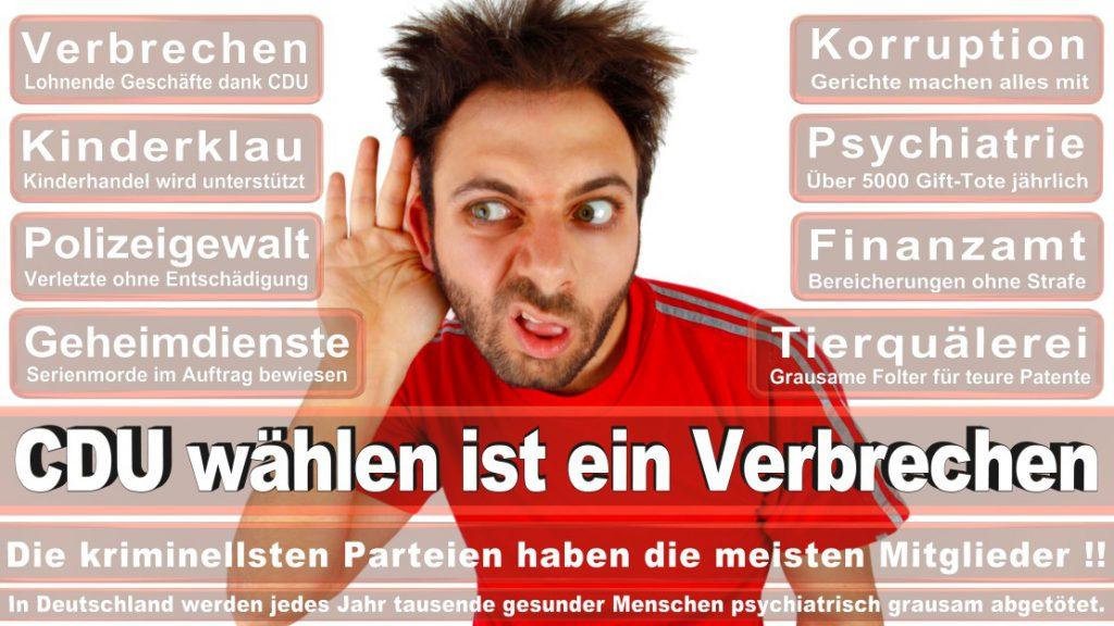 Wahlplakate-2017-CDU (5)